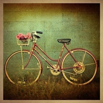 bicycle,inspiration,photography,photos-8962060fee147dbd20571c1368c3a9f4_h